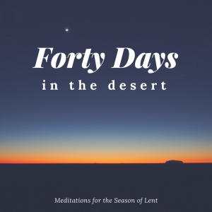 Desert Day 41: Be Still, My Restless Soul ...